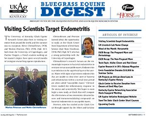 Bluegrass Equine Digest September 2010
