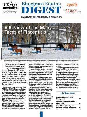 Bluegrass Equine Digest February 2016