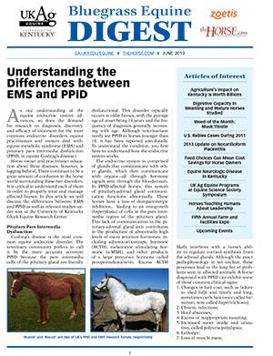Bluegrass Equine Digest June 2013