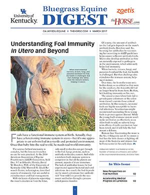 Bluegrass Equine Digest March 2017