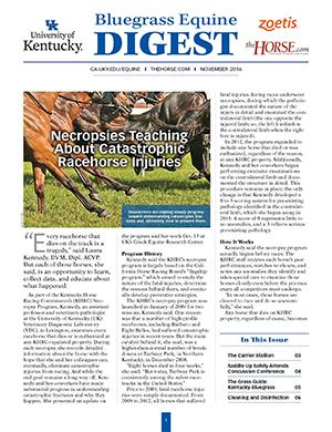 Bluegrass Equine Digest November 2016