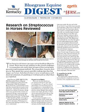 Bluegrass Equine Digest October 2016