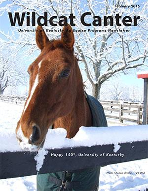 Wildcat Canter - February 2015