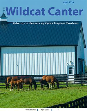 Wildcat Canter April 2016