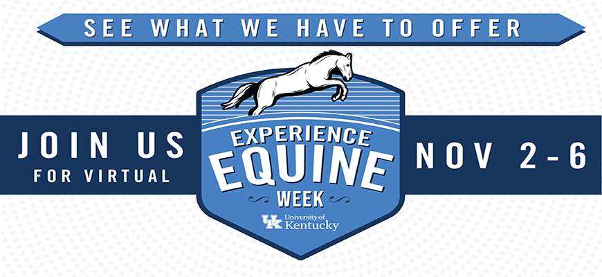 Experience Equine Week Hero