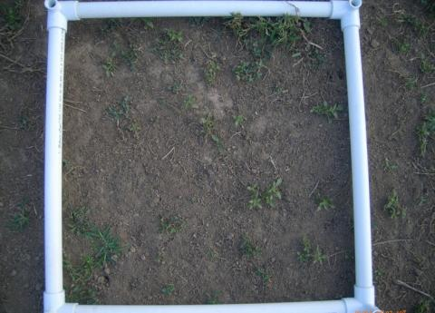 soil and grid